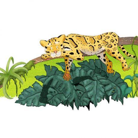 leopard wall art print